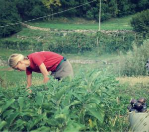 Lavori di fine estate alla Gianni Canton